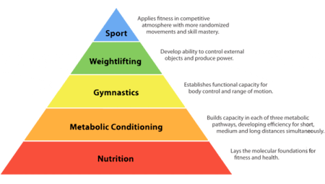 crossfit heirarchy